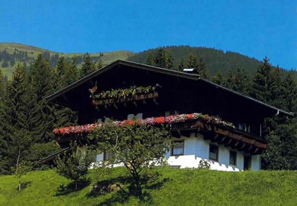Zdjęcia hotelu: Bauernhof Zimmeröd, Hollersbach im Pinzgau