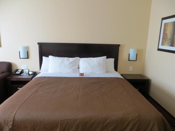 Hotel Pictures: Poplar Tree Inn, Stoughton