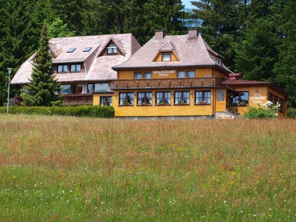 Hotelbilleder: Hotel Restaurant Peterle, Feldberg in Mecklenburg
