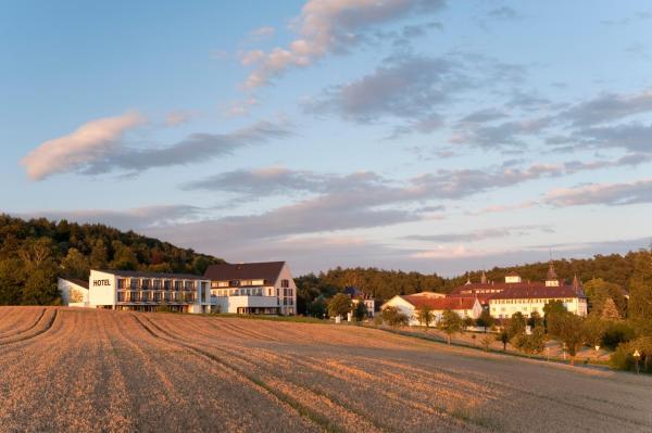 Hotel Pictures: Hotel Haus St. Elisabeth, Allensbach