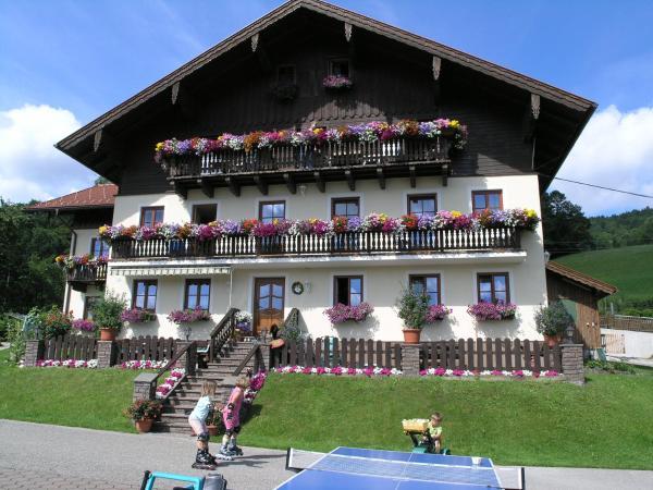 酒店图片: Weberhof Nussbaumer, 迪弗格拉根