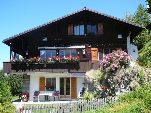 Hotel Pictures: Chalet Acheregg, Wengen