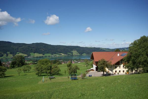 酒店图片: Ferienhof Edtmeier, Zell am Moos