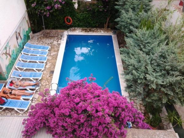 Hotel Pictures: , Roses