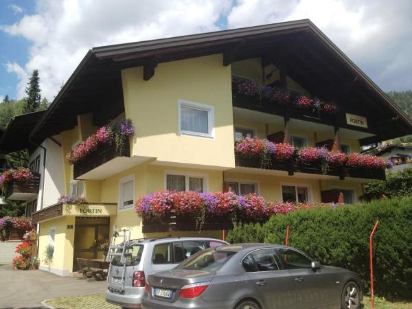 Φωτογραφίες: Pension Appartement Fortin, Bad Kleinkirchheim