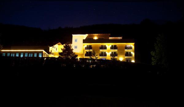 Hotel Pictures: Kuschelhotel Zeman, Alland