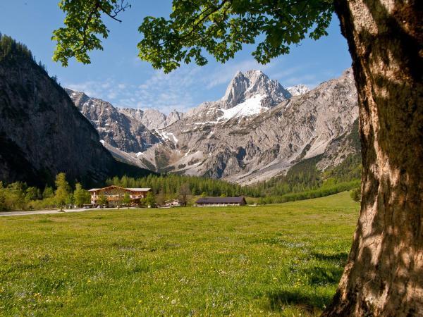 Fotos do Hotel: Gramai Alm alpengenuss & natur spa, Pertisau