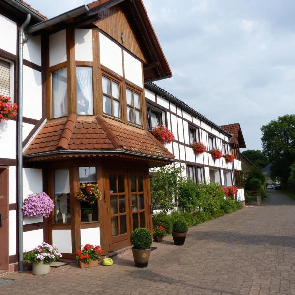 Hotel Pictures: Pension Ridder, Marienmünster