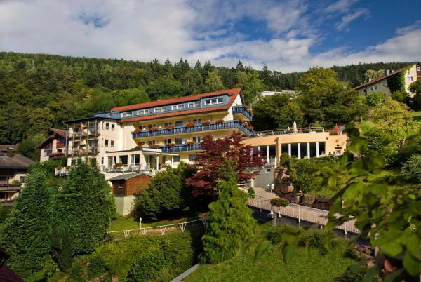 Hotelbilleder: Hotel Rothfuss, Bad Wildbad