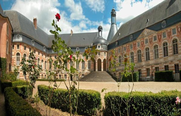Hotel Pictures: Château de Saint-Fargeau, Saint-Fargeau