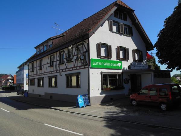 Hotel Pictures: Grüner Baum, Stetten