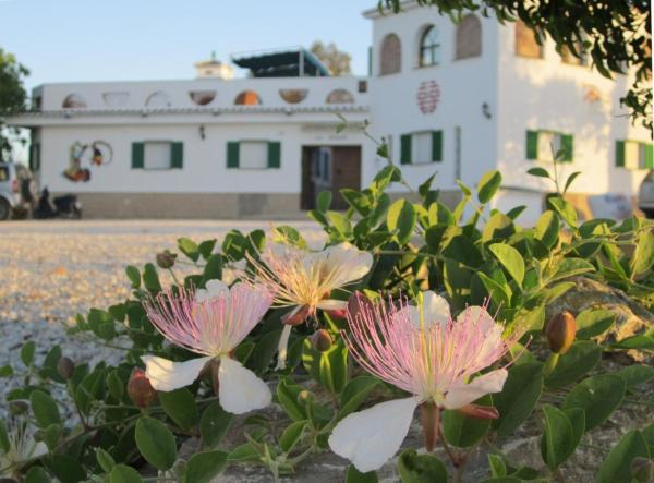Hotel Pictures: , Chilches