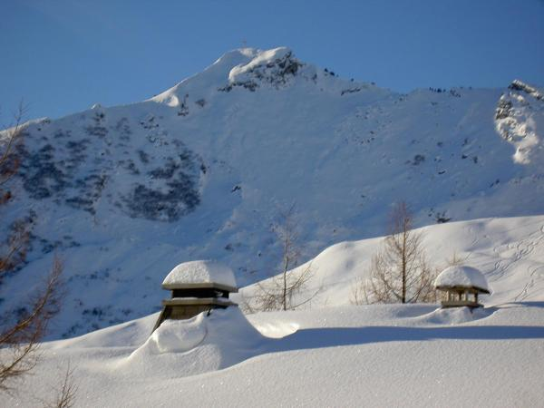 Hotel Pictures: Résidence Les Terrasses du Mont-Blanc, Le Praz de Lys