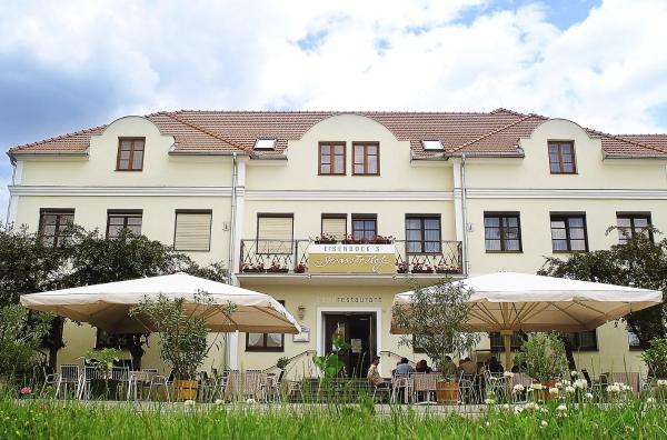 ホテル写真: Eisenbock's Strasser Hof, Strass