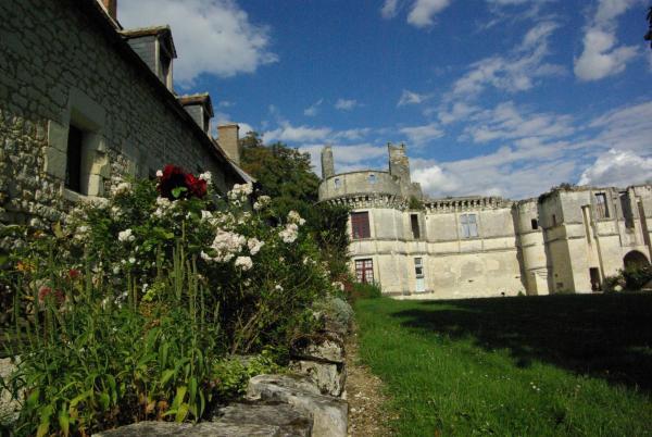 Hotel Pictures: Château de Veuil, Veuil