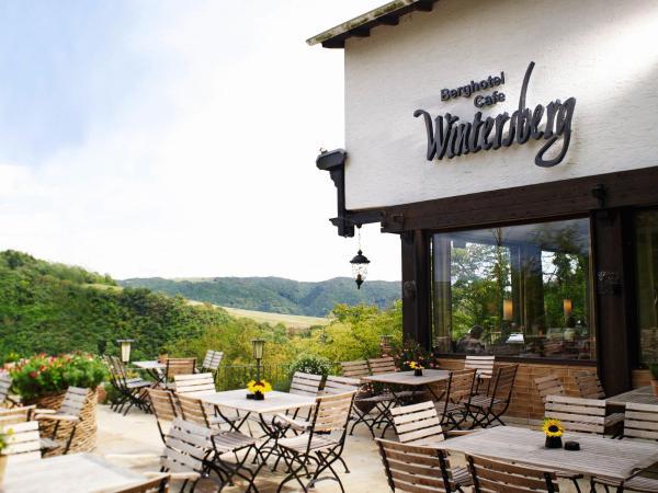 Hotel Pictures: Berghotel Wintersberg, Bad Ems