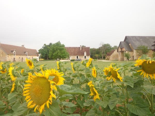 Hotel Pictures: Chambres D'Hôtes Du Guillot, Sainte-Solange