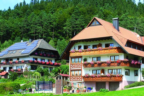 Hotel Pictures: Schlosshof - der Urlaubsbauernhof, Elzach