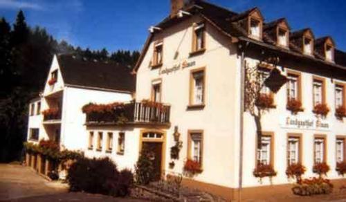Hotelbilleder: Hotel Landgasthof Simon, Waldrach