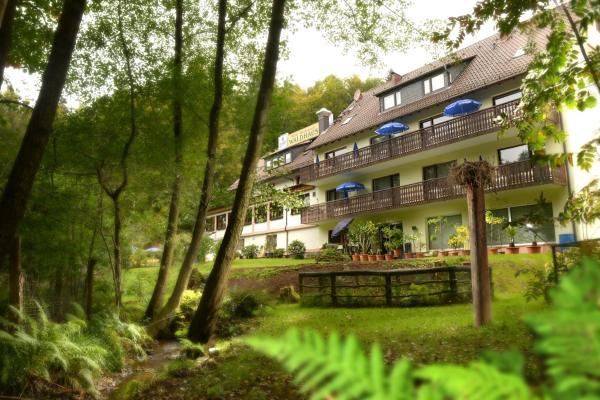 Hotelbilleder: Hotel Waldhaus, Mespelbrunn