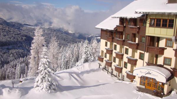 酒店图片: Alpenhotel Plattner, 索内纳尔佩·纳斯费尔德
