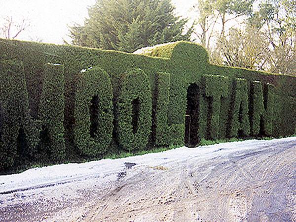 Fotos do Hotel: Mooltan House, Hepburn Springs