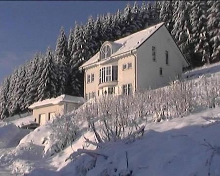 Hotel Pictures: Ferienwohnung Haus Waldesruh, Olsberg