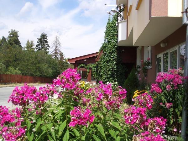 Hotel Pictures: Guest House Zodiac, Samokov