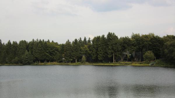 Hotelbilleder: Waldsee Feriendienst 'Ferienpark am Waldsee', Clausthal-Zellerfeld