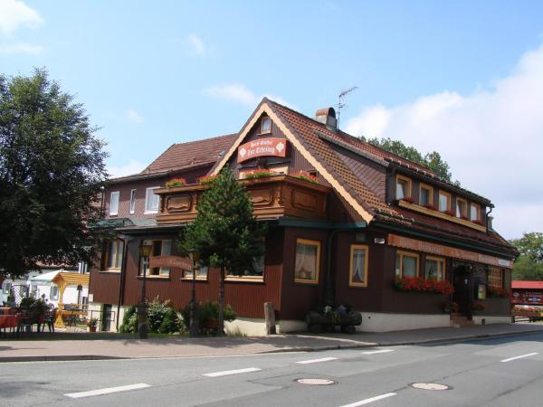 Hotel Pictures: Hotel Zur Erholung, Braunlage
