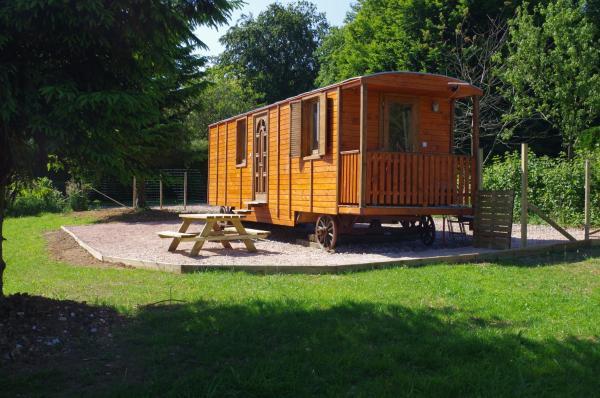 Hotel Pictures: Ferme du bois des Etroits Wats, Seninghem