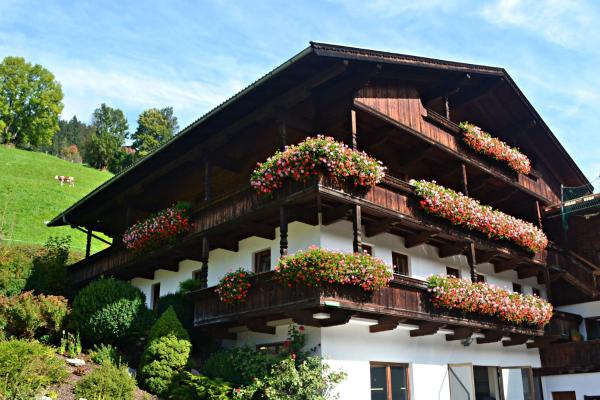 酒店图片: Appartements Zellner, 阿尔卑巴赫
