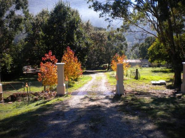 Hotellikuvia: Hillview Oak B&B, Lankeys Creek
