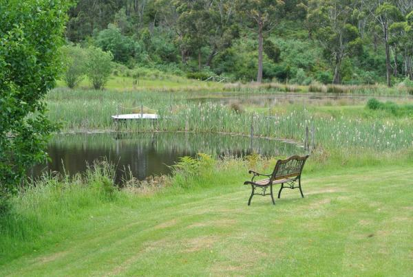 Hotellikuvia: Hamlet Downs Country Accommodation, Fentonbury