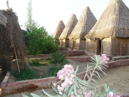 Hotel Pictures: Badry Sahara Camp, Bawati
