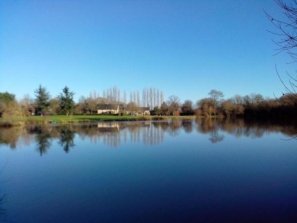 Hotel Pictures: Le Pineau, La Chapelle-sur-Oudon