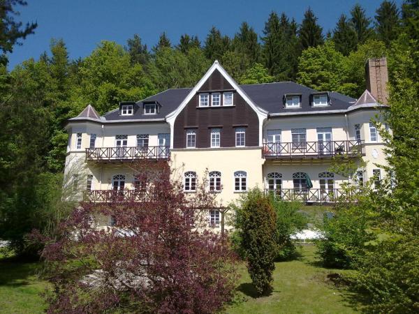 Hotel Pictures: Villa Wilisch, Amtsberg