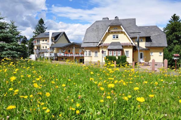 Hotel Pictures: Pension Waldschloesschen, Oberhof