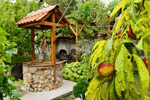酒店图片: Guest House De Charme Pri Baba Lili, Kyustendil