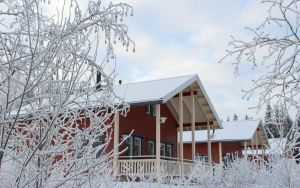Hotel Pictures: Himoseasy Cottages, Jämsä