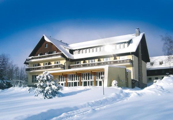 Hotel Pictures: Hotel Haus am Ahorn, Schoneck