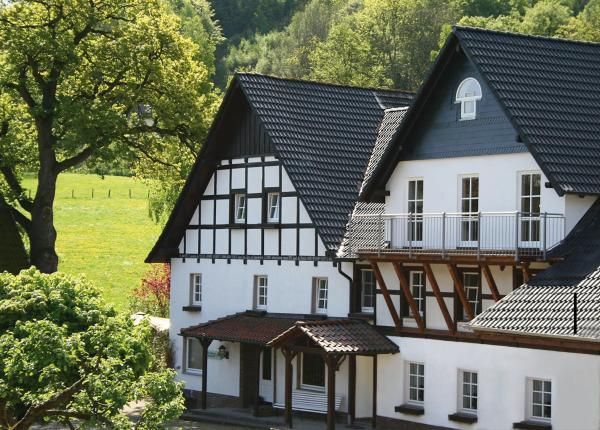 Hotel Pictures: Haus Berghoff, Sundern