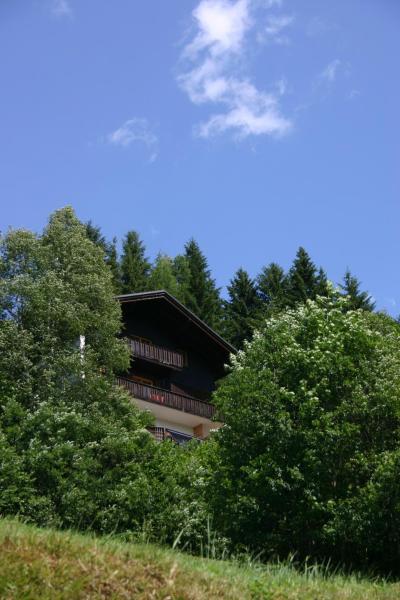 Φωτογραφίες: Haus Ilse, Bad Kleinkirchheim