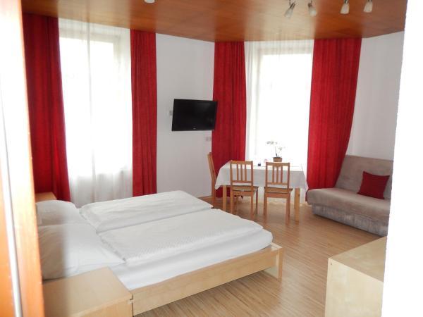 酒店图片: Hotel Garni Wilder Mann, 林茨