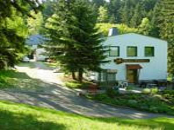 Hotel Pictures: Pension Waldidyll, Stützerbach