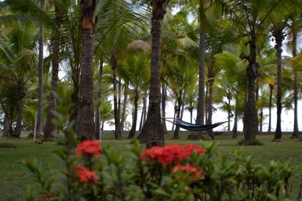 Hotel Pictures: Hotel La Isla, Parrita