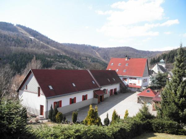 Hotel Pictures: , Mikulov v Krušných Horách
