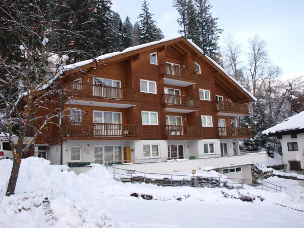 Fotos del hotel: Superior Appartement Schiwiese, Bad Hofgastein