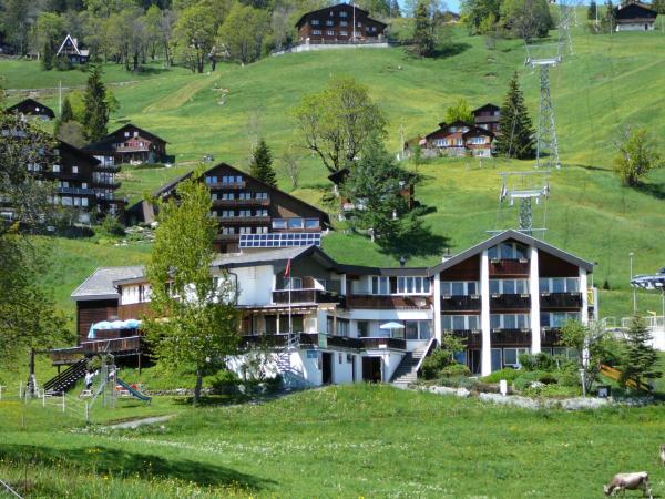 Hotel Pictures: Hotel Restaurant Cristal, Braunwald