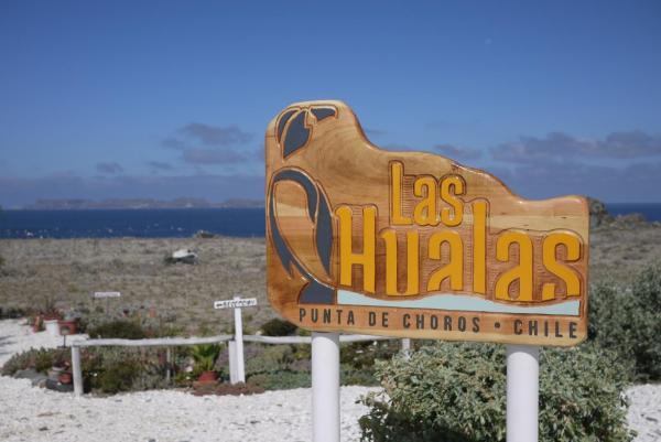 Hotel Pictures: Las Hualas, Punta de Choros